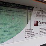 Despachante Cecchetto: seu carro com a documentação em dia